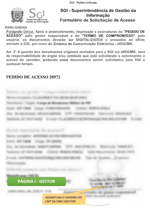 formulario_preenchido_gestor