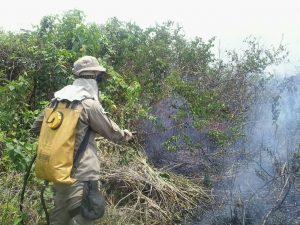 Militares do 3° Grupamento de Bombeiros realizaram o combate ao incêndio florestal de grande proporções que assolou a linha fronteiriça Brasil-Bolívia.